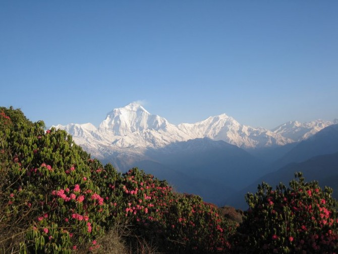 View of Ghorepani Poon Hill Trek