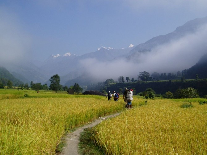 Farming land in Manaslu area trekking
